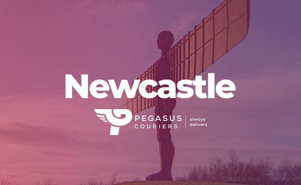 Newcastle delivery driver Courier